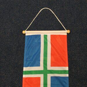 Groningen wimpel logo